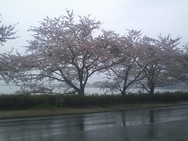 雨の海津大崎と長浜