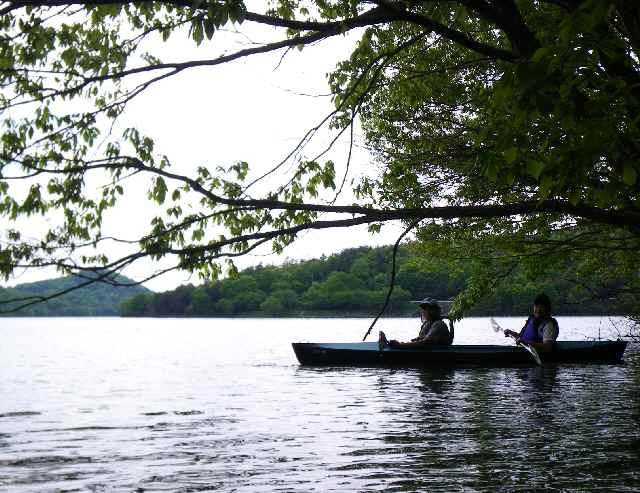 新緑の千丈寺湖