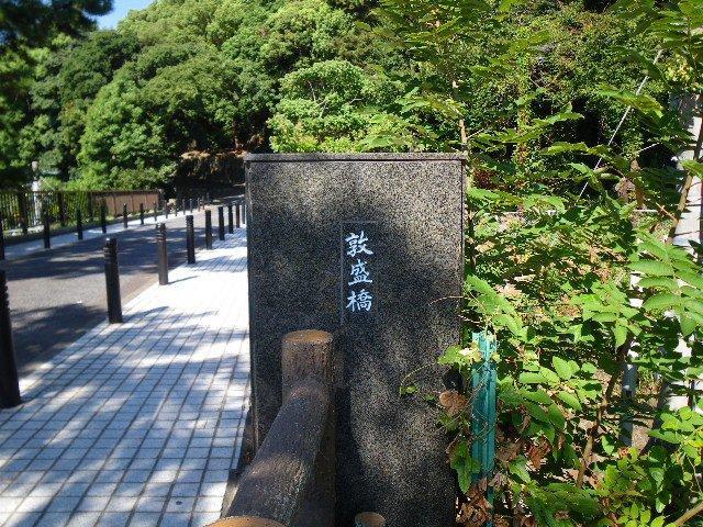 六甲に架かる橋1(須磨公園から東山)