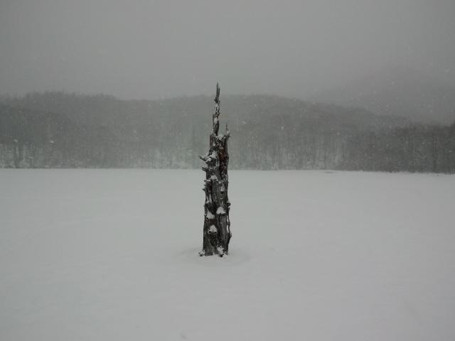 正月の山旅 2012 (2)戸隠