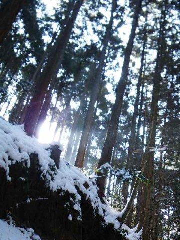 立春の金剛山2012.02