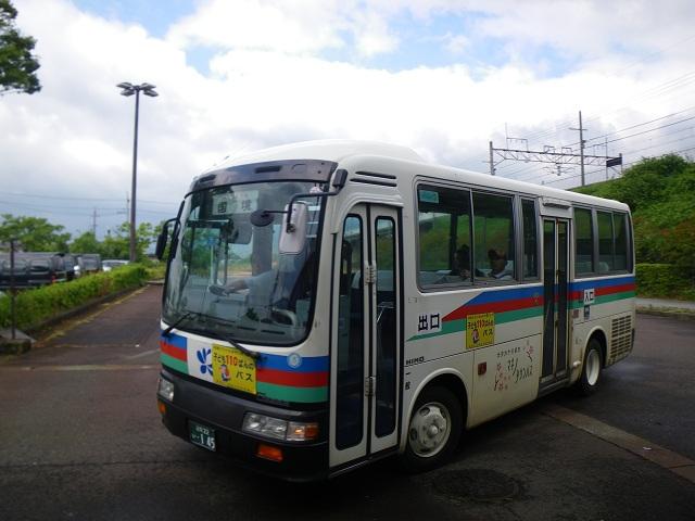 Imgp0594