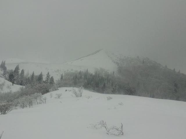 灰色の武奈ヶ岳 2013.01