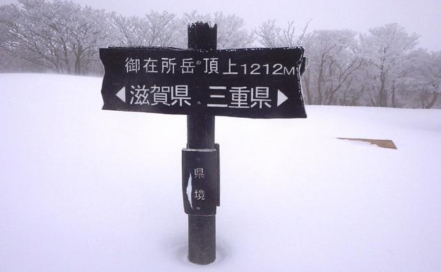 Wg4_1131
